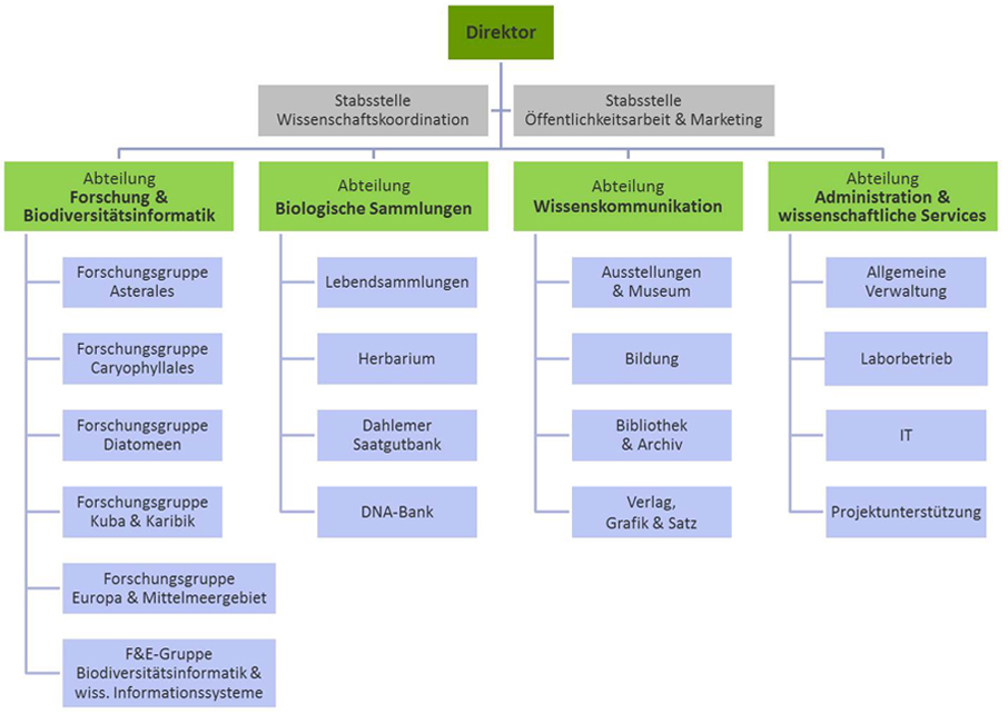 Organisationsstruktur des BGBM | BGBM