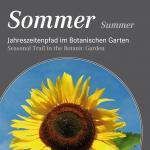 Sommer - Summer
