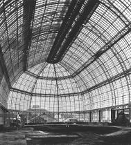 Großes Tropenhaus 1905