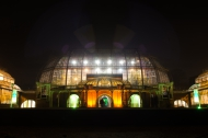 Nächtliches Großes Tropenhaus (zur Palmensinfonie). Foto: K. Schomaker / Botanischer Garten und Botanisches Museum Berlin