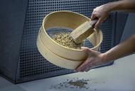 Reinigung der Samen im Labor. Foto: A. Obermüller