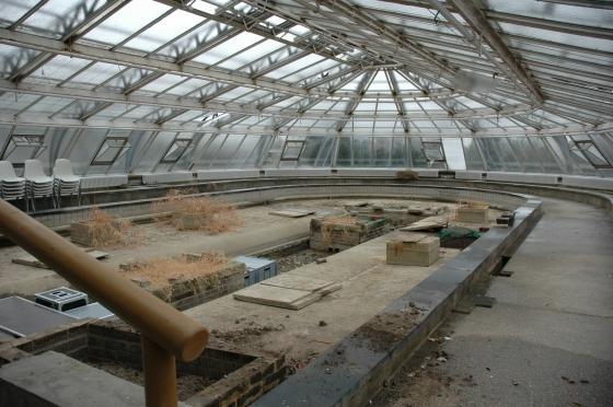 Victoria-Gewächshaus: Innenansicht im Januar 2011