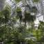Großes Tropenhaus, Innenansicht